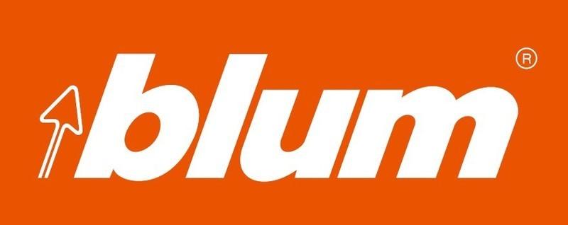 Image result for logo blum