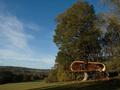 06-treehouse-dum-na-strome.jpg