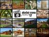 Vítězné-práce-soutěže-Dřevěná-stavba-roku-2017.jpg